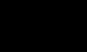 "<div class=""bildtext"">System 4: Multifunktionsband mit feuchtevariablen Membranen.</div>"